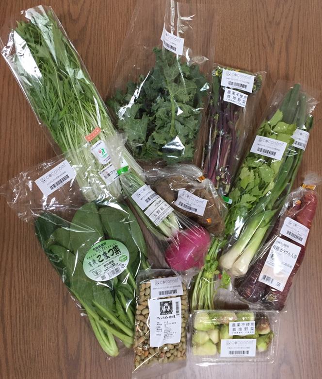 ココノミ 野菜 画像
